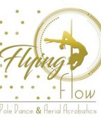 Flying Flow Pole Dance and Aerial Acrobatics